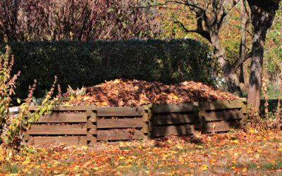 Formation gratuite compostage